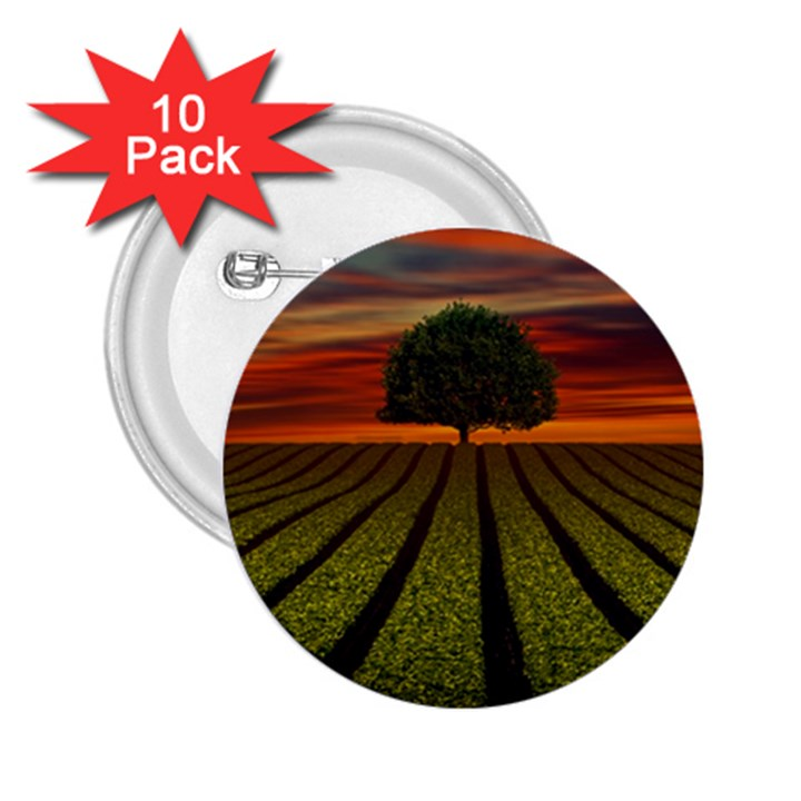 Natural Tree 2.25  Buttons (10 pack)