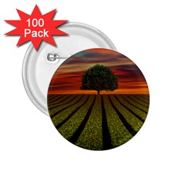 Natural Tree 2 25  Buttons (100 Pack)