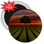 Natural Tree 3  Magnets (10 pack)  Front
