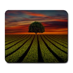 Natural Tree Large Mousepads