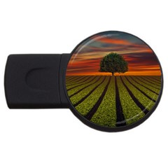 Natural Tree Usb Flash Drive Round (2 Gb)