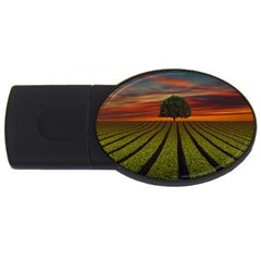 Natural Tree Usb Flash Drive Oval (2 Gb)
