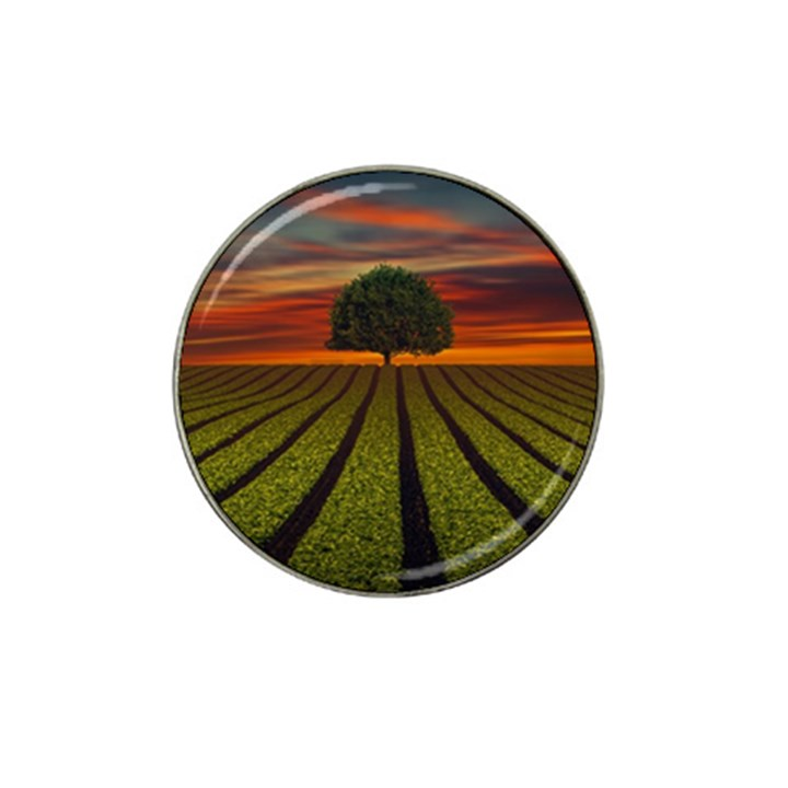 Natural Tree Hat Clip Ball Marker (4 pack)