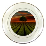 Natural Tree Porcelain Plates Front