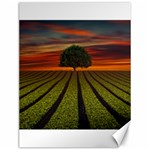 Natural Tree Canvas 12  x 16  16 x12 Canvas - 1