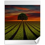 Natural Tree Canvas 16  x 20  20 x16 Canvas - 1
