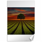Natural Tree Canvas 24  x 36  36 x24 Canvas - 1
