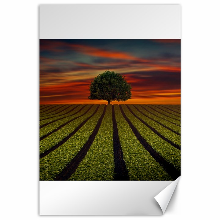 Natural Tree Canvas 24  x 36