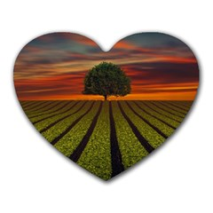 Natural Tree Heart Mousepads