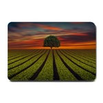 Natural Tree Small Doormat  24 x16 Door Mat - 1