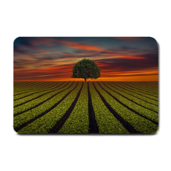Natural Tree Small Doormat