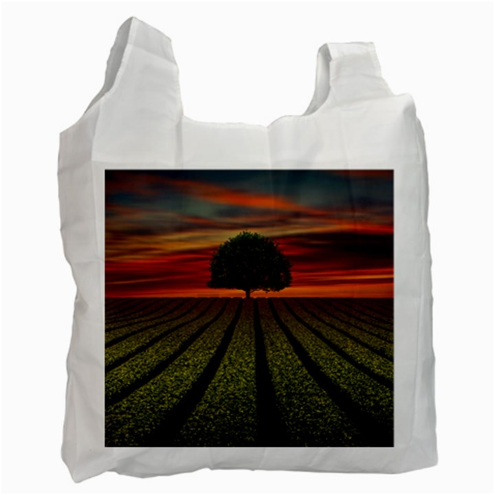 Natural Tree Recycle Bag (One Side)