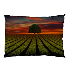 Natural Tree Pillow Case (two Sides)