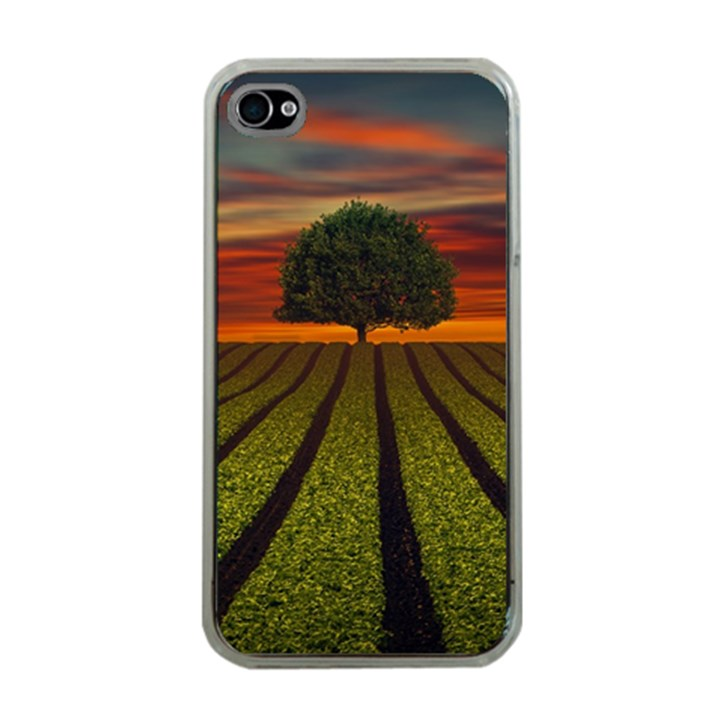 Natural Tree Apple iPhone 4 Case (Clear)