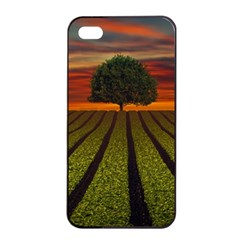 Natural Tree Apple Iphone 4/4s Seamless Case (black) by Alisyart