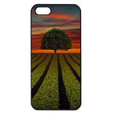Natural Tree Apple Iphone 5 Seamless Case (black)