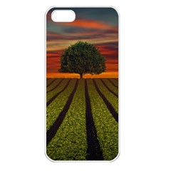Natural Tree Apple Iphone 5 Seamless Case (white)