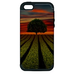 Natural Tree Apple Iphone 5 Hardshell Case (pc+silicone)