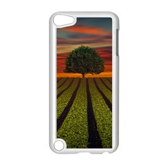 Natural Tree Apple Ipod Touch 5 Case (white)
