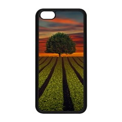 Natural Tree Apple Iphone 5c Seamless Case (black)