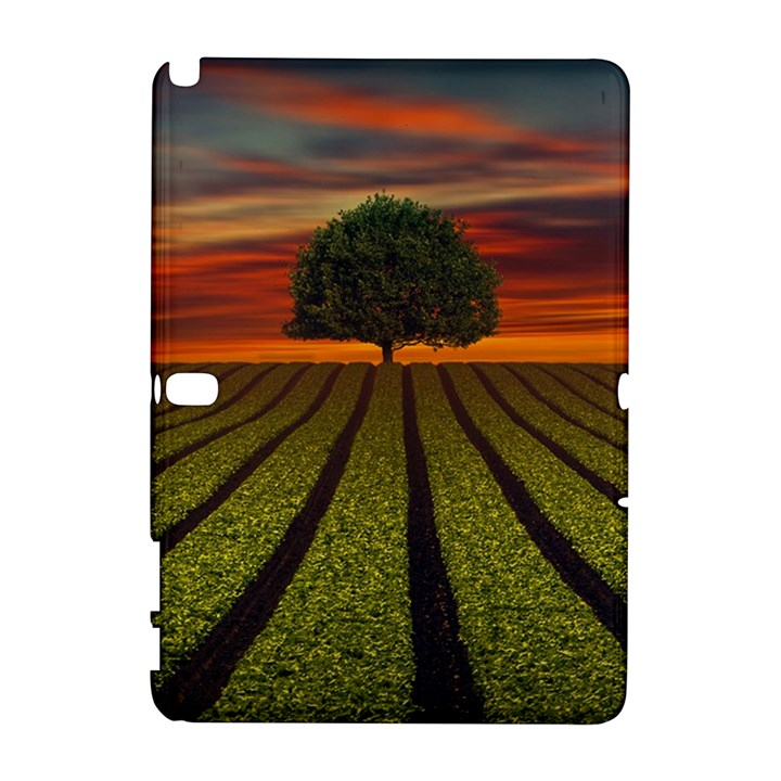 Natural Tree Samsung Galaxy Note 10.1 (P600) Hardshell Case
