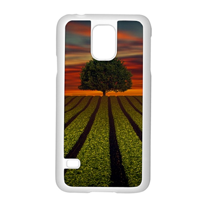Natural Tree Samsung Galaxy S5 Case (White)