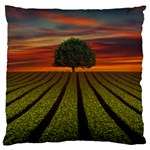 Natural Tree Large Flano Cushion Case (One Side) Front