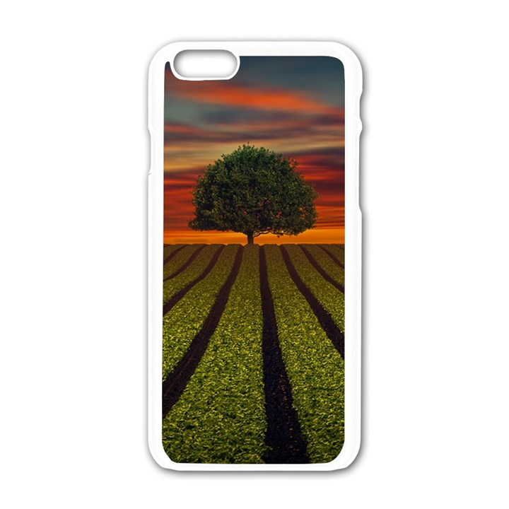 Natural Tree Apple iPhone 6/6S White Enamel Case