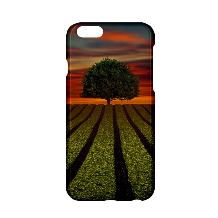 Natural Tree Apple iPhone 6/6S Hardshell Case