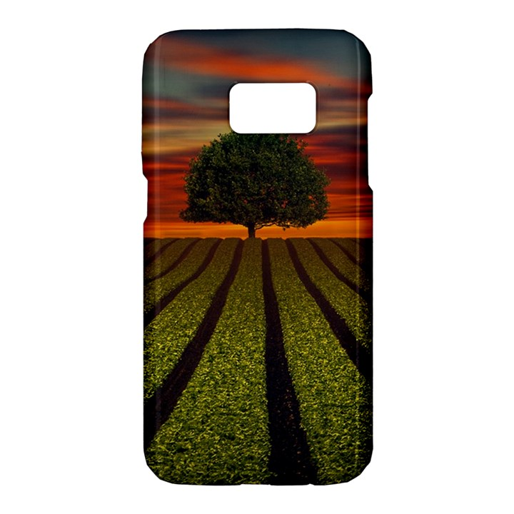Natural Tree Samsung Galaxy S7 Hardshell Case