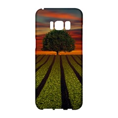 Natural Tree Samsung Galaxy S8 Hardshell Case