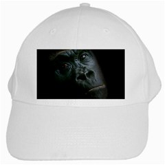Gorilla Monkey Zoo Animal White Cap