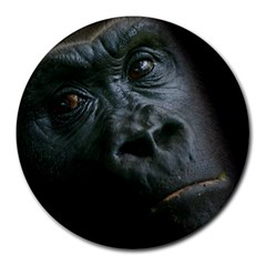 Gorilla Monkey Zoo Animal Round Mousepads by Nexatart