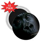 Gorilla Monkey Zoo Animal 2.25  Magnets (10 pack)  Front