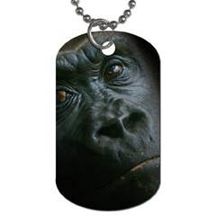 Gorilla Monkey Zoo Animal Dog Tag (one Side)
