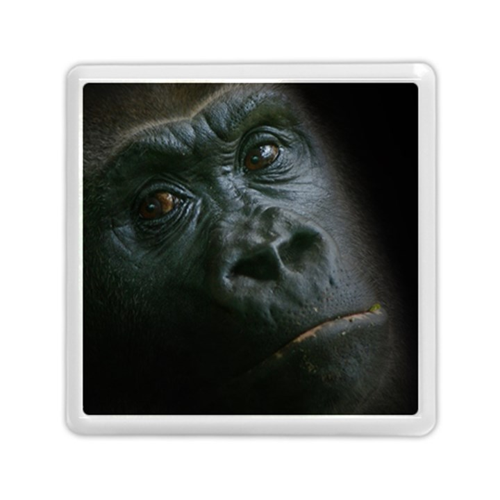 Gorilla Monkey Zoo Animal Memory Card Reader (Square)
