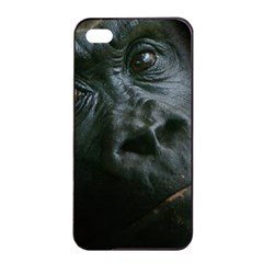 Gorilla Monkey Zoo Animal Apple Iphone 4/4s Seamless Case (black)