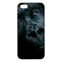 Gorilla Monkey Zoo Animal Iphone 5s/ Se Premium Hardshell Case
