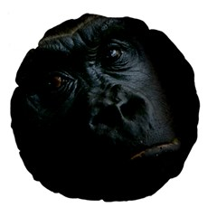 Gorilla Monkey Zoo Animal Large 18  Premium Flano Round Cushions