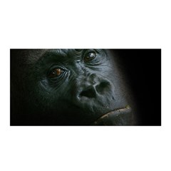 Gorilla Monkey Zoo Animal Satin Wrap by Nexatart