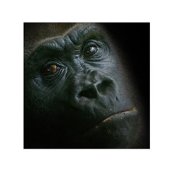 Gorilla Monkey Zoo Animal Small Satin Scarf (square) by Nexatart
