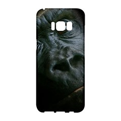 Gorilla Monkey Zoo Animal Samsung Galaxy S8 Hardshell Case  by Nexatart