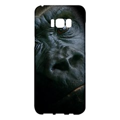 Gorilla Monkey Zoo Animal Samsung Galaxy S8 Plus Hardshell Case  by Nexatart