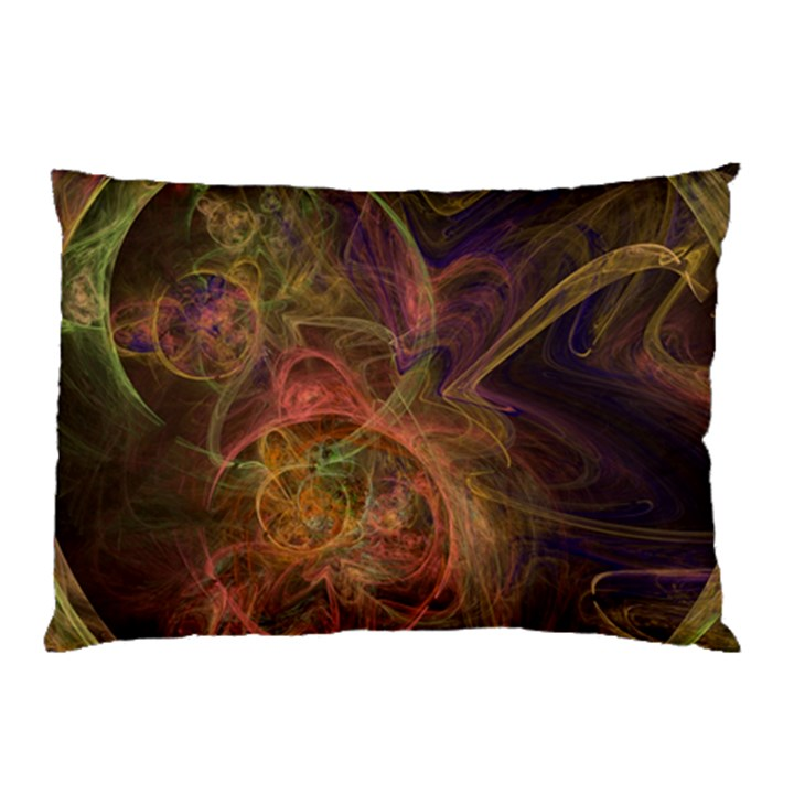 Abstract Colorful Art Design Pillow Case