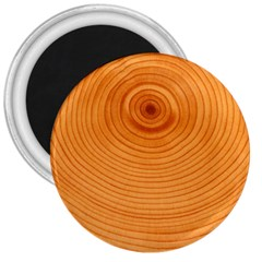 Rings Wood Line 3  Magnets