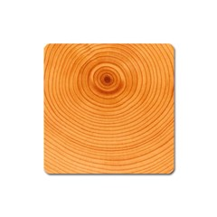 Rings Wood Line Square Magnet