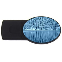 Snowy Forest Reflection Lake Usb Flash Drive Oval (2 Gb) by Alisyart
