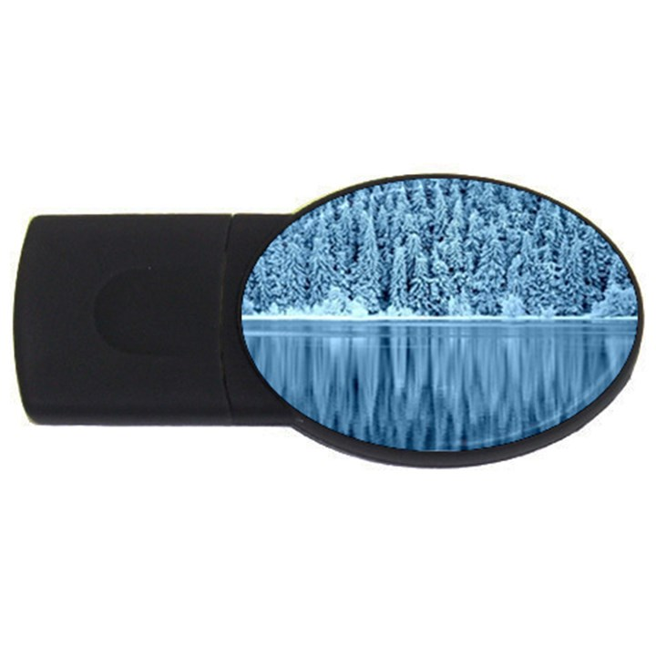 Snowy Forest Reflection Lake USB Flash Drive Oval (4 GB)