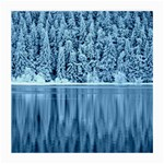Snowy Forest Reflection Lake Medium Glasses Cloth Front