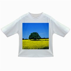 Tree In Field Infant/toddler T Shirts